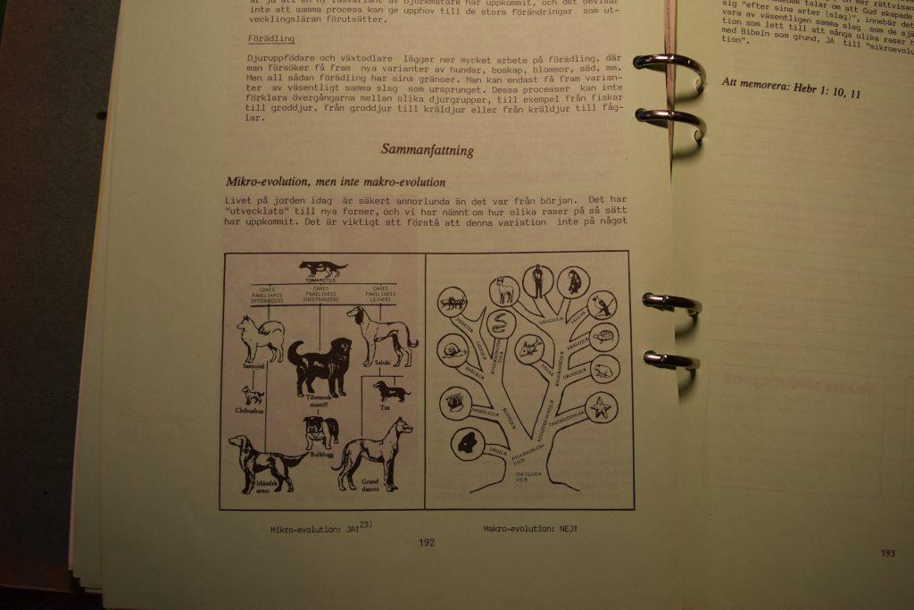 Text ur pärmen. Mikroevolution JA, makroevolution Nej