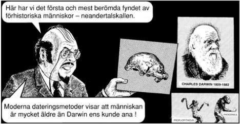 Läraren: Här har vi det första och mest berömda fyndet av förhistoriska människor - neandertalskallen. Moderna dateringsmetoder visar att människan är mycket äldre än Darwin ens kunde ana!